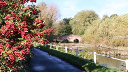 Looking up the River Hadleigh Picture: BARRY PULLEN/IWITNESS