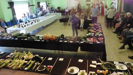 TheOpen Produce and Handicraft Show is returning to Old Buckenham.