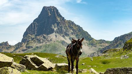The Pic du Midi d'Ossau in the French Pyrenees. Pic: Philipimage/Getty