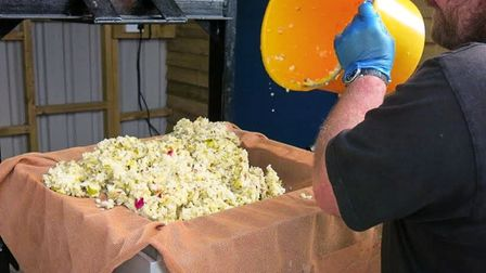 After being pulped, the apple is squeezed through a press