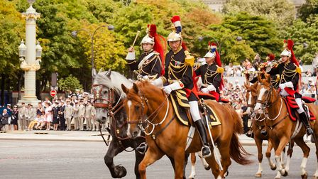 Horses in the Bastille Day parade in Paris. Pic: Guillaume Louyot/Getty