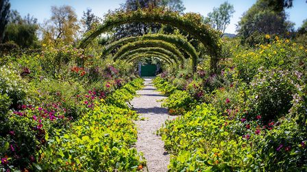 Monet captured his garden at Giverny on canvas
