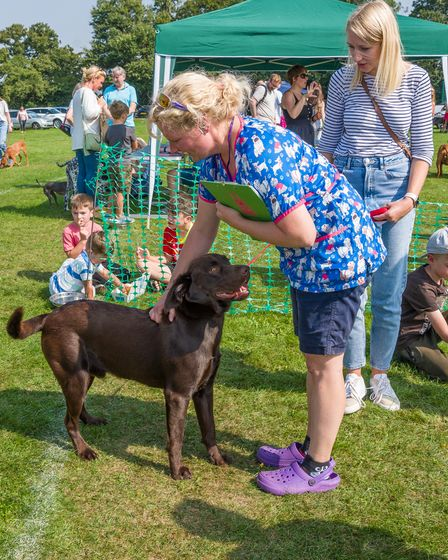 A dog with the show judge and the owner at Felsted fun dog show