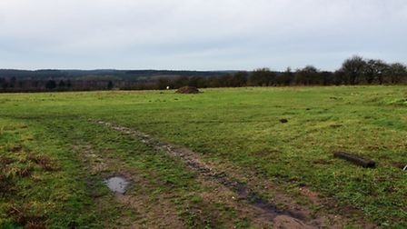 The land in between Brunel Way and the A11 in Theteford which is earmarked for development into Thet
