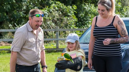 A girl holds a multicoloured bird on her arm at Flitch Green Fun Day 2021, Essex