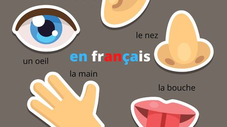 15 French idioms with parts of the body