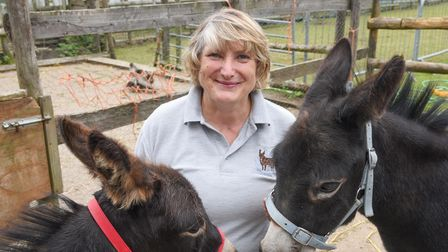 Sarah Mcpherson, founder and managing director of Minature Donkeys for Wellbeing. Picture: Danielle