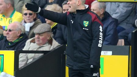 Norwich City manager Alex Neil is taking his squad to Abu Dhabi for a warm weather training camp. Pi