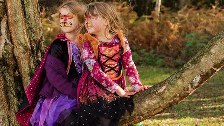 The Real Halloween, organised by The Fairyland Trust, returns to Bradmoor Woods in Norfolk this October.