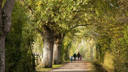 Rural Sarthe offers green space and affordable property prices (©Ville de Mans Tourisme)