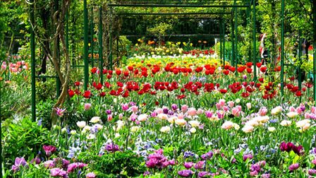 Monet's Gardens in Giverny, France © Ssedro, Flickr, (CC BY-SA 2.0)