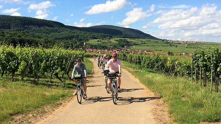 Find out how one expat found happiness running cycling and walking tours in Alsace