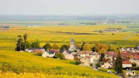 Champagne is famous for its bubbly but find out why it makes a great place to live (Thinkstock)