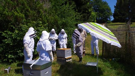 Learn bee-keeping while on holiday in France © 13 bees