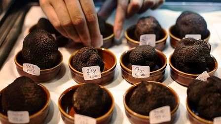 Truffles being prepared to be sold at market. Pic: Varaine/CC BY-SA 4.0