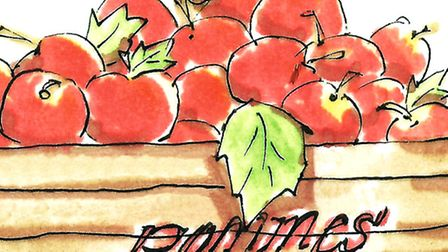 A crate of juicy apples fresh from the market © Melissa Wood