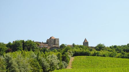 Gramont from across the vines