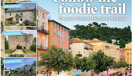 French Property News March issue 301
