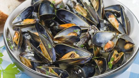 A plate of perfectly cooked moules marinières