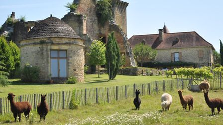 A visit here and you just don't want to go home: three houses, a pigeonnier and medieval chateau rui