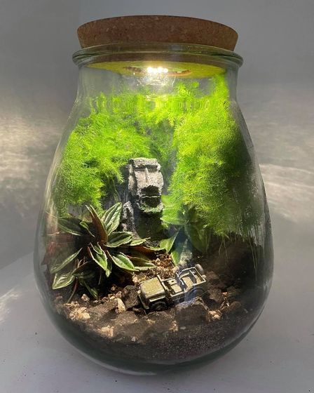 The Fakenham students terrariums designs are a bit different to what you might expect.