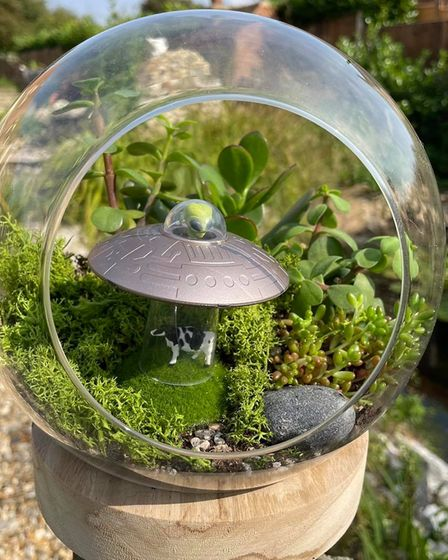 One of the Fakenham student'sterrariums designs is around a UFO abduction.