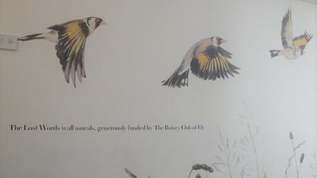 The library is themed with pictures and wall murals from Robert's book, 'The Lost Words'.