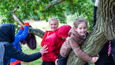 Children use Wenny Road Meadow in Chatteris to climb trees.