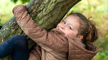 Children use Wenny Road Meadow in Chatteris to climb trees and spend time with their friends.