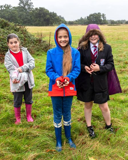 Children use Wenny Road Meadow in Chatteris to search for conkers with their friends.