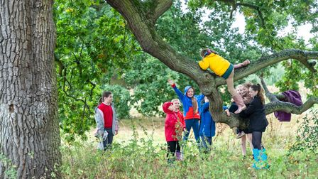 Children use Wenny Road Meadow in Chatteris to play with their friends.