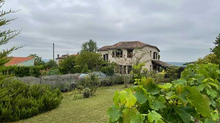Grape vine in front of large house for sale