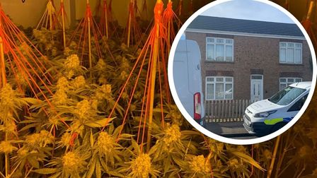 Cannabis found at house in Whittlesey