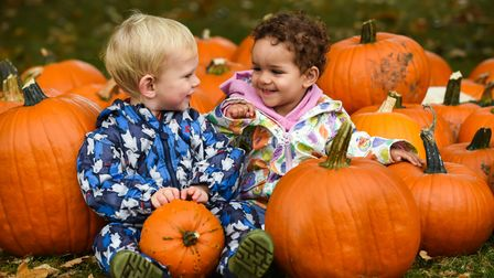 Two happy smiling children in a pumpkin patch at Gressenhall Farm and Workhouse