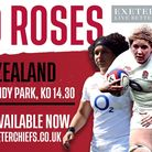 Red Roses Fixture