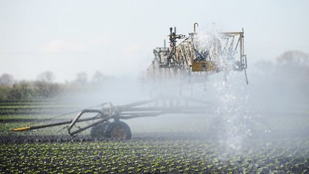 Irrigation at GS Shropshire & Sons in the Fens. Picture: Ian Burt