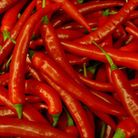 Chillies are being used to cure pain at Cromer Hospital.