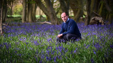 Bluebell Wood Burial Park. Andrew Morton.Picture: ANTONY KELLY