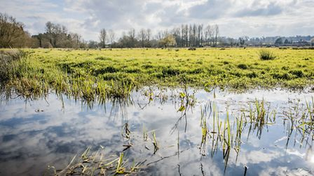 A drainage ditch at full capacity on Peter Howell's land near North Elmham. Picture: Matthew Usher.