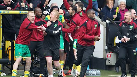 The Norwich bench and Norwich Manager Alex Neil celebrate victory at Carrow Road against Newcastle.
