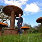 Robert Yates from Brampton Willows has created giant willow mushrooms to go on display at the Art fo