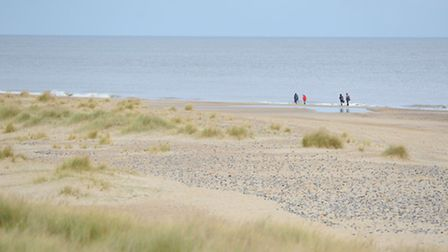 View of the coast off Winterton where a Humpback Whale was seen swimming.Picture: James Bass