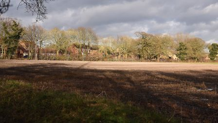 Gayton residents are concerned about the loss of green spaces in the village. Picture: Ian Burt