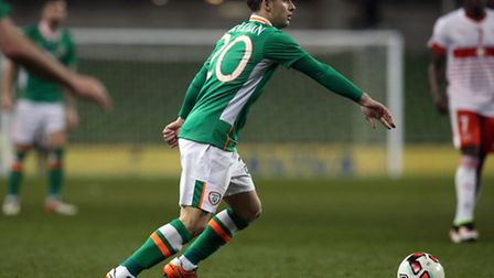 Norwich City's Republic of Ireland midfielder Wes Hoolahan is being urged to take his time over his