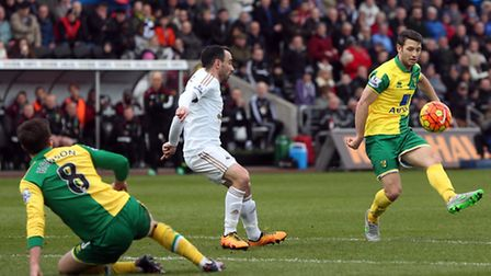 Both Jonny Howson and Wes Hoolahan could prove key for Norwich City against Newcastle United.