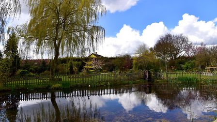 Christine and Philip Greenacre's garden in Rushall which they will be opening to the public to raise