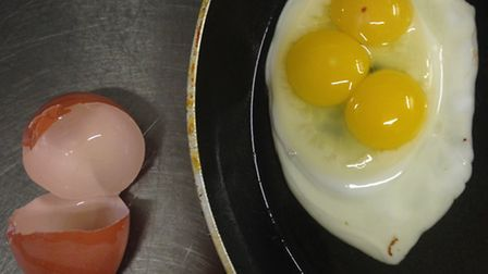 The triple-yolk egg at Amy's Kitchen at Feltwell Golf Club, run by Amy Guy. The egg came from Island