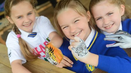 Professional body painter Cat Finlayson was at Howard Junior School to promote an upcoming World Wil