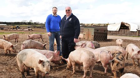 Jimmy Butler who has won pig farmer of the year with his son Alistair.Pictured with their pigs on fi