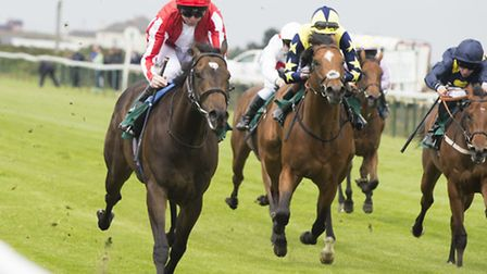 Gret Yrmouth races June 8th 2016Ardad, left, first winner at re-opened YarmouthCredit: Leaderboard P